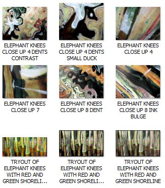 ELEPHANT KNEES IN PICASA